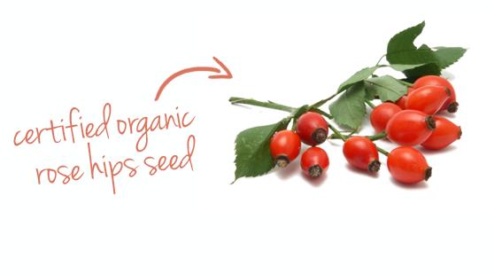 certified organic rose hips